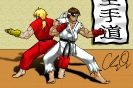 Ken and Ryu Kata - Color